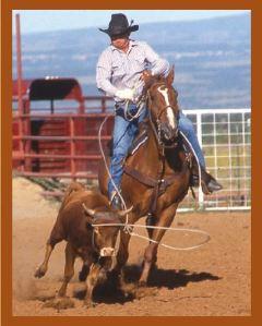 brochure-roping2
