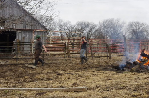 Christian and Dallas burning rubbish and moving panels to set up larger corral.
