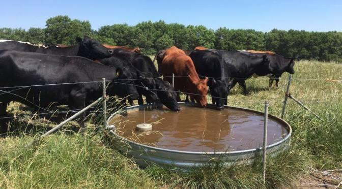 Challenges of Solar Water Pump