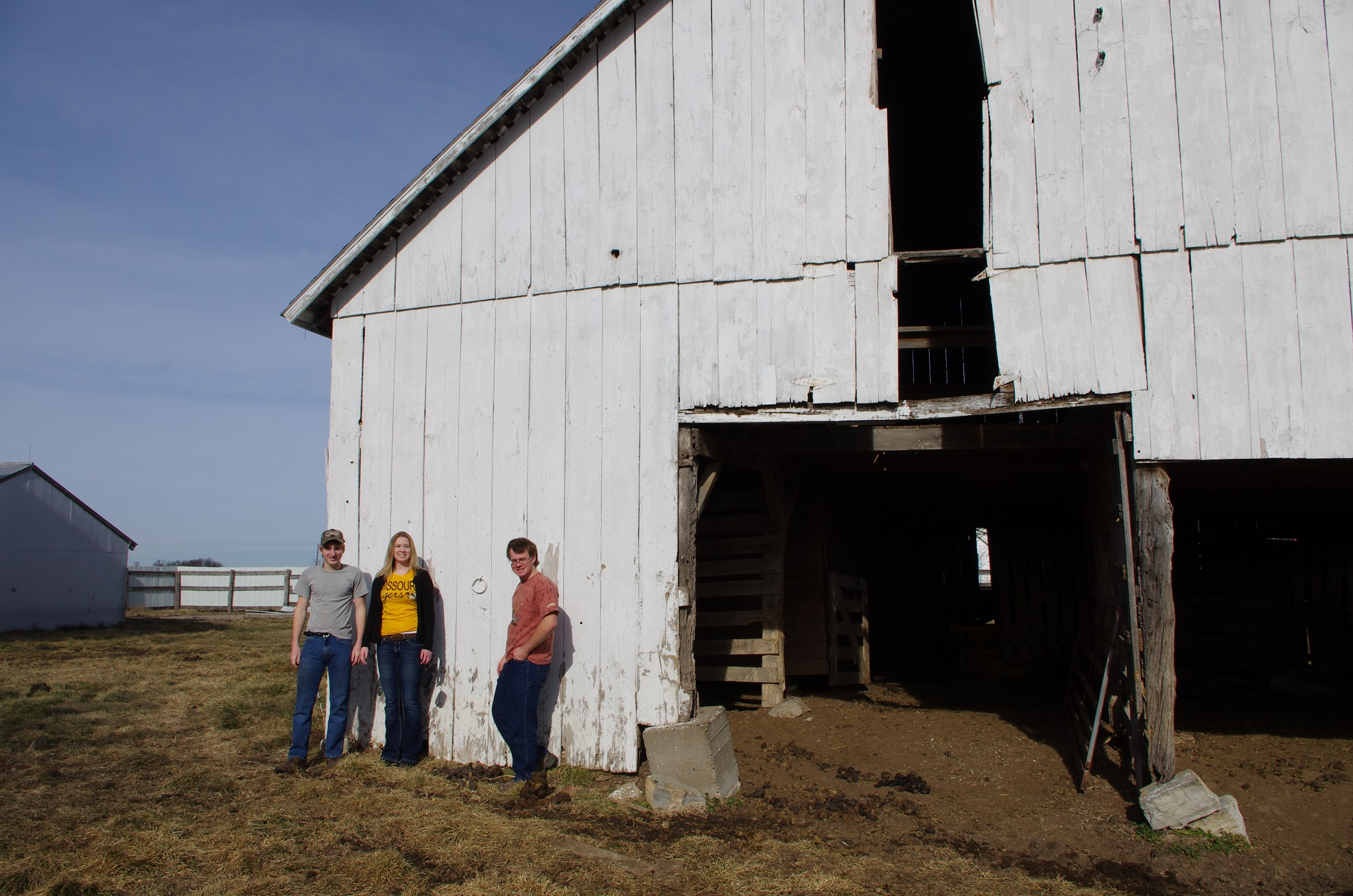 Horse Barn - Lamme 1-9-2013 (8) - Copy